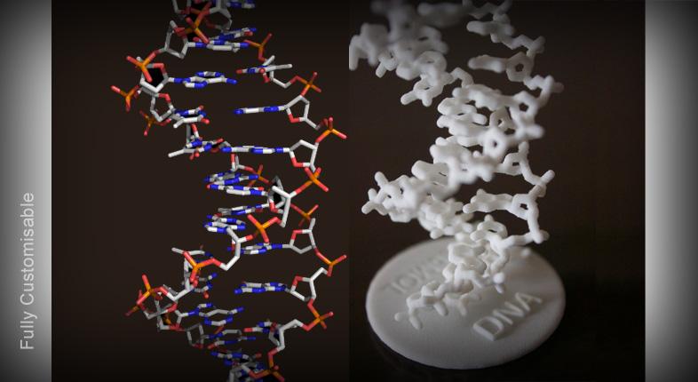 3D Molecule Models